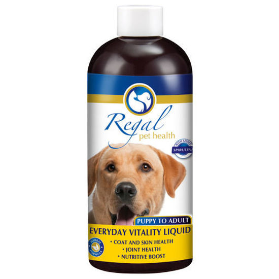 Picture of Regal Everyday Vitality Adult Liquid 400ml