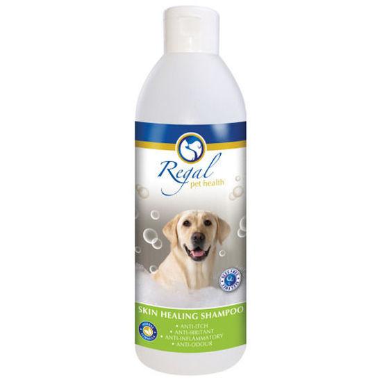 Picture of Regal Skin Healing Shampoo 500ml